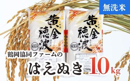 Z03-001【令和3年産米】はえぬき無洗米10㎏(5kg×2袋)