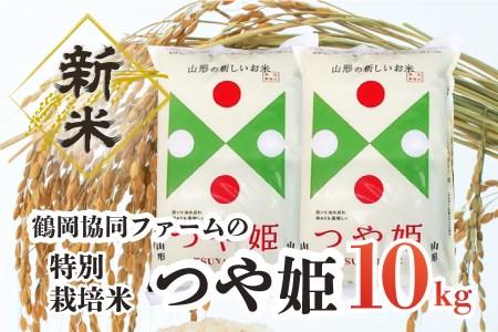 A33-001 【令和3年産米】特別栽培米つや姫10㎏(5kg×2袋)