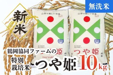 A33-002 【令和3年産米】特別栽培米つや姫無洗米10㎏(5kg×2袋)