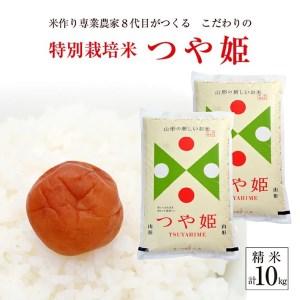 SA0915 令和3年産【精米】つや姫10kg(5kg×2袋)「農家直送」 KA