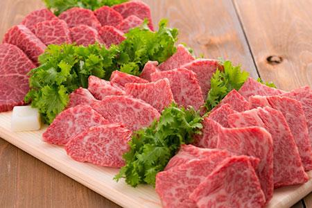 ND9 冷蔵 山形牛焼肉三昧セット