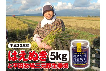 SA0011 【平成30年産】 庄内産米はえぬき 5kgと平田牧場三元豚「ご飯にかける生姜焼き」1個  SI