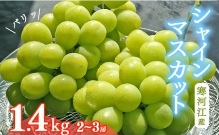 【2021年産】 山形県産シャインマスカット 1.4kg 2~3房 1箱 015-B27