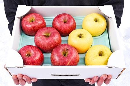 よくばりりんご2種詰合せ 3kg(サンふじ・シナノゴールド) 010-B20