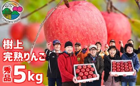 平均糖度14度!【樹上完熟りんご】 サンふじ 5kg <農家こだわり栽培> 015-B14