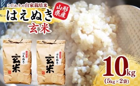 2021年産新米 山形県産はえぬき玄米10kg(5kg×2袋)<自家栽培米>  010-C07