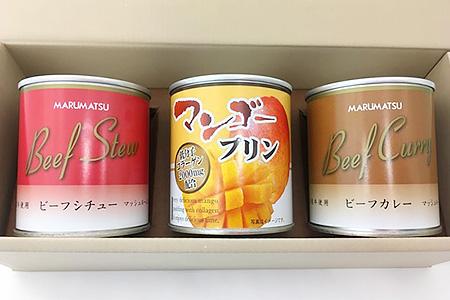 0090-03 3缶ギフトセット(ビーフカレー・ビーフシチュー・杏仁orマンゴープリン)