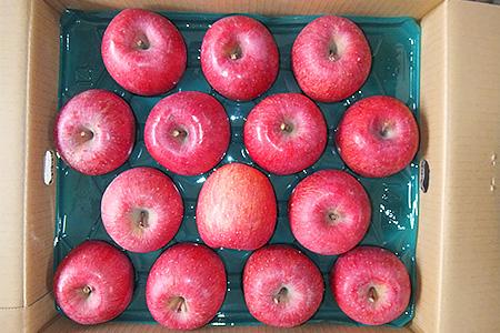 0056-18 家庭用りんご(ふじりんご)40~46玉10kg