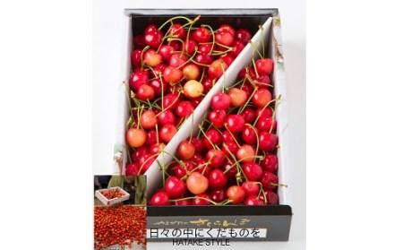 0003-2102 さくらんぼ(佐藤錦)1kg ご家庭用