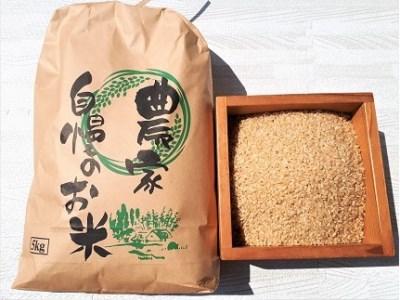 0056-2029 【令和3年産 10月~発送】はえぬき(玄米)5kg