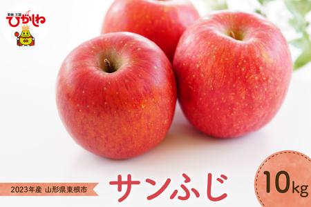 P-1250 りんご「サンふじ」10kg JA提供(2020年11月下旬~12月中旬送付)