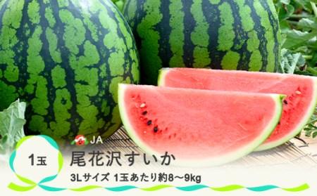 【JA】尾花沢すいか3Lサイズ(約8~9kg)×1(7月下旬~8月中旬頃発送)N31
