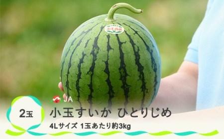 【JA】小玉すいか ひとりじめ4Lサイズ(約3kg)×2玉(7月上旬頃~下旬頃発送)NK42