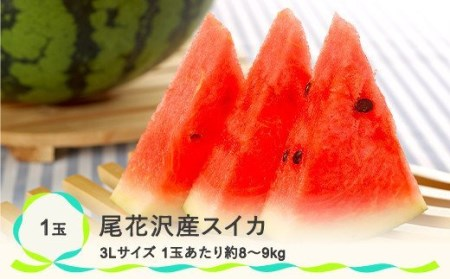 【観光物産】尾花沢産スイカ3Lサイズ(約8~9㎏)×1(7月下旬~8月上旬頃発送)【令和3年産】(K31)