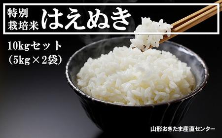 《令和2年産》特別栽培米はえぬき 10kg (5kg×2)1000