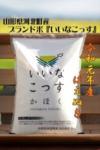 A-1142001≪数量限定≫【2020年1月発送分】山形県河北町産はえぬき10kg(5kg×2袋)【米comeかほく協同組合】