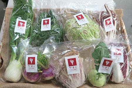 G10-1 かほくイタリア野菜おまかせBOX