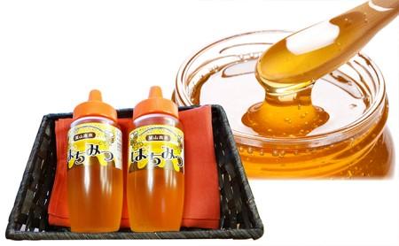 大江町採蜜のハチミツ600g(300g×2本)