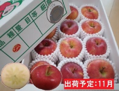 11月 贈答規格 蜜入りこうとくりんご約3kg特秀~秀【大江町産・山形りんご・りんご専科 清野哲生】