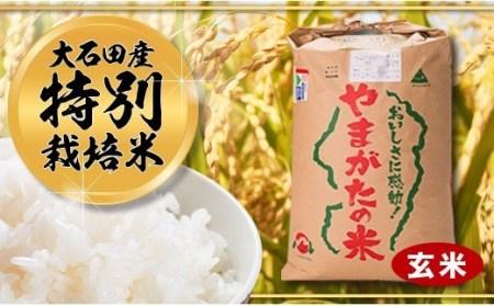 27-[3]【令和2年大石田町産特別栽培米】はえぬき30kg(玄米)