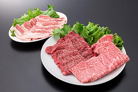 25-[1]【A4ランク以上】山形牛カルビ&モモ&山形県産豚バラ焼肉セット(計600g)