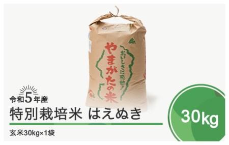 【先行予約】令和3年産はえぬき30㎏ 大石田町産 特別栽培米 玄米