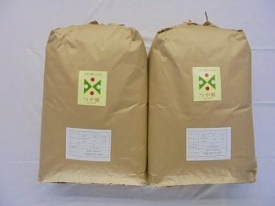 914-7<2:6< つや姫 玄米60kg 30kg×2回発送(2か月間隔)
