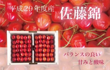 29501 旬の味覚!!平成29年度産 さくらんぼ(佐藤錦) 1kg