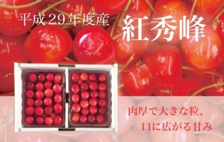 29502 【クレジット決済限定】残りわずか! さくらんぼ(紅秀峰) 1kg