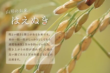 190101-3<< 令和元年産 はえぬき10kg(5kg×2袋)令和2年1月発送