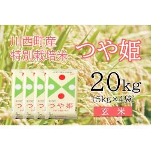 川西町産米「つや姫」玄米 真空パック詰 20kg【令和3年産】【1144429】