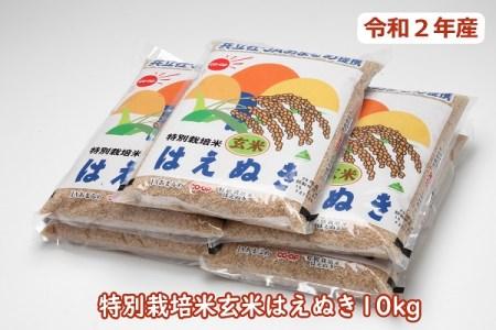 令和2年産特別栽培米玄米はえぬき10kg