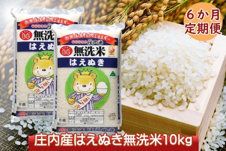 <10月開始>庄内米6か月定期便!はえぬき無洗米10kg(入金期限:2021.9.25)