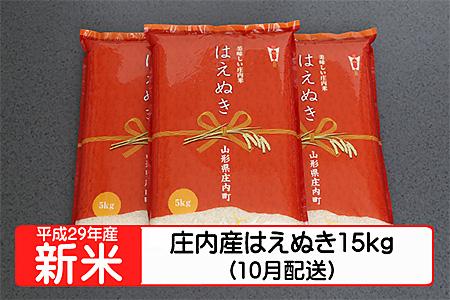 【A117】平成29年庄内町産はえぬき15kg(10月発送)