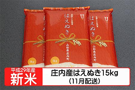 【A119】平成29年庄内町産はえぬき15kg(11月発送)