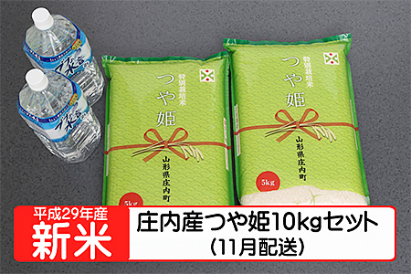 【A121】平成29年庄内町産つや姫10kgセット(11月発送)