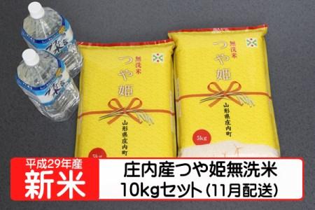 【A122】平成29年庄内町産つや姫無洗米10kgセット(11月発送)