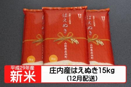 【A123】平成29年庄内町産はえぬき15kg(12月発送)