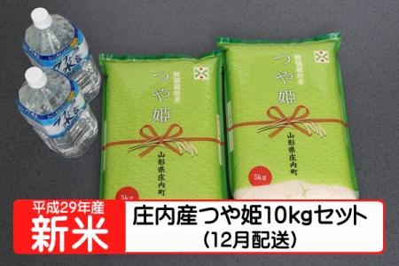 【A125】平成29年庄内町産つや姫10kgセット(12月発送)