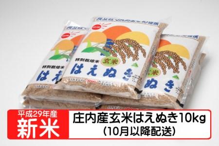 【A132】平成29年庄内町産玄米はえぬき10kg