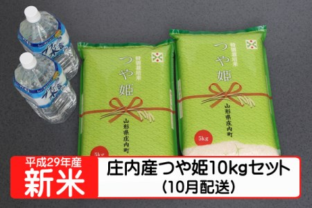 【A133】平成29年庄内町産つや姫10kgセット(10月発送)