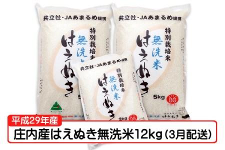 【A140】平成29年庄内町産はえぬき無洗米12kg(3月発送)