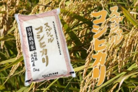 【B-248】庄内町産スペシャルコシヒカリ5kg(10月以降順次発送)