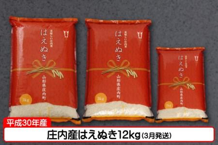 【C-262】庄内産はえぬき12kg(3月発送)