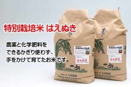 石垣農園の特別栽培米はえぬき10kg