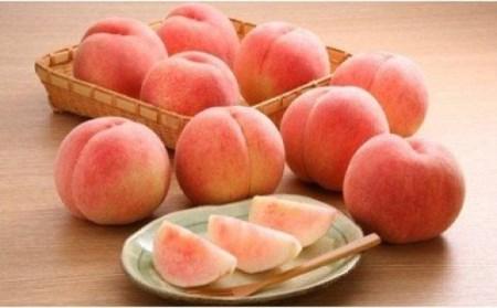 No.0907 【先行予約】 美味しい品種を厳選 もも 白桃 3kg(9~12玉)