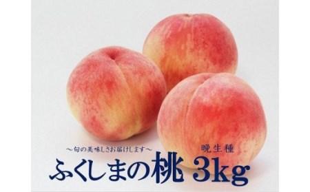 No.1396 今年最後のふくしまの桃 3kg (晩生種)もも モモ