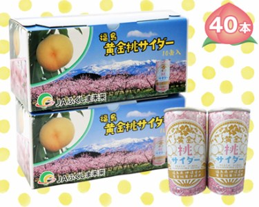 B-9 黄金桃サイダー 40本