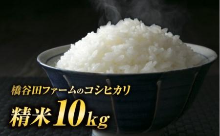 令和2年産 コシヒカリ 精米 10kg