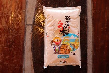014f017 2020年産 楢葉町ブランド米 楢葉う米 楢葉町産 コシヒカリ 5kg(5kg×1袋)